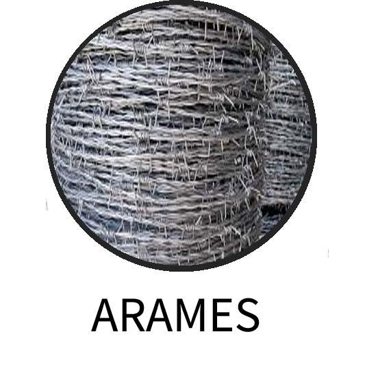 ARAMES